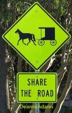 Share The Road by SammyDAdams