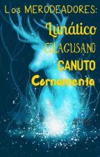 Los merodeadores: Lunático, Colagusano, Canuto y Cornamenta by Ariadnas1607