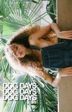 dog days° by rebxls-