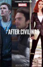 After Civil War by winterwidow1917