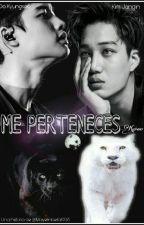 Me Perteneces (KaiSoo) Au! by MayelinBella1998