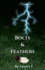 Bolts And Feathers by fictionfox15