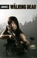 Novela The Walking Dead: ¿Somos un equipo? - Daryl Dixon (Norman Reedus) y tú by PaolaSantibaez506