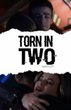 Torn in Two (Snowbarry) {Slow Updates} by -Shelley