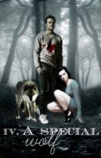 A Special Wolf  VOL 4 by rosela40