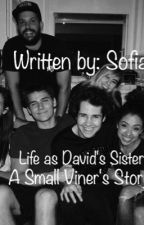Life as David's Sister. A Small Viner's Story.  by IlluminatexDolans