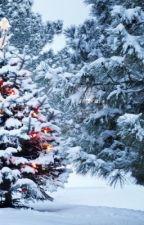 Wo ist die Weihnachtsstille? by WattStories23