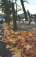 Outono  by agridouce