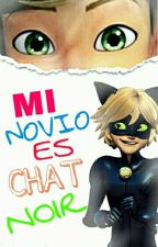 Mi Novio Es Chat Noir (Adrien Agreste/Chat Noir & Tu). by ElyAgresteDupain