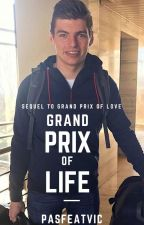 Grand Prix Of Life - Max Verstappen by pasfeatvic