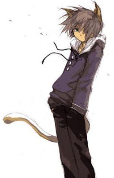 Kitty-Kat (Yaoi boyxboy)