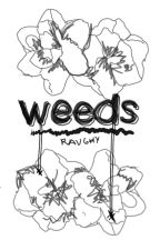 Weeds (George Daniel/Matty Healy) by babyspiders
