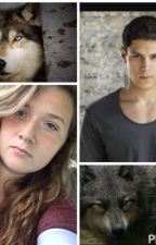 My life as Jared Cameron's sister and Paul Lahote's imprint by KelseyJackson4
