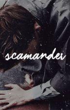 Newt Scamander x Reader by AmeliaMoore9