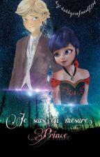Je suis en mesure, Prince |Miraculous| by dobbyisafreeelf394