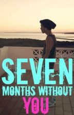 Seven Months Without You by FefeLove