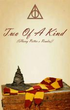Two Of A Kind ((Harry Potter X Reader)) by SnowxFlake14