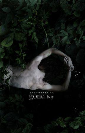 Gone Boy by xenomorphius