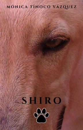 Shiro © ¡YA A LA VENTA!  by nikass