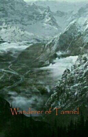 Wanderer of Tamriel by Zero018