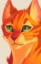 Warrior cats x reader (Book two) by DaughterofScourge
