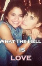 What The Hell Is Love? -Bieber Love Story- by meidialmira