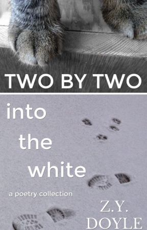 Two by Two: Into the White: A Poetry Collection by zydoyle