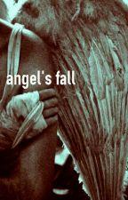 [2Jae] angel's falls by ArsAndSoul