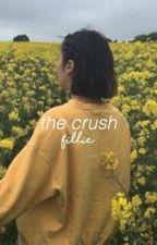The crush // a fillie story by strangefinn