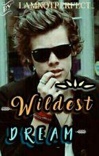 Wildest Dream || hs by sluttybaby_