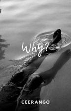 Kādēļ? by Annyway123