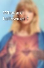 What are hollywings ? by Stormfirethetribred