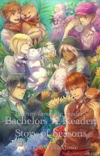Bachelors X Reader: Story Of Seasons by TheWriteMusic
