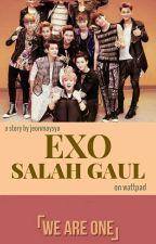 EXO SALAH GAUL by jungkookiestar