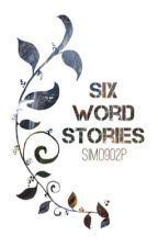 Six word stories by simo902p