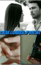 SOKAK LAMBASI-ALSEL  by gecedefne4747