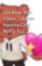 J'et Aime Mon Villain 《Adrien Agreste/Chat Noir y Tu》 by maria_neko_sama
