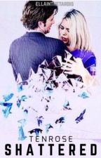 Shattered ~ (a TenRose Fanfiction) by ellainthetardis