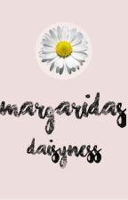 Margaridas // Mileven by daisynesss
