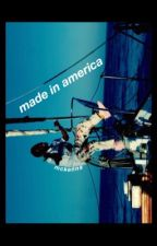 made in america ; gawsten  by -flojo
