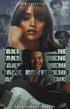 Fake Boyfriend || H.S (Concluída) by camilzrstyles