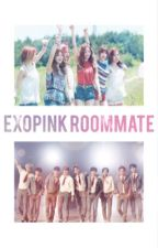 ExoPink Roommate  by sehunchick
