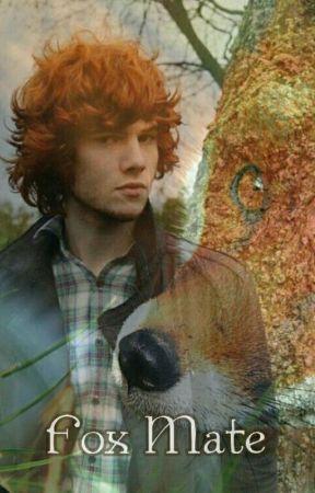 Fox Mate (bxb) by gravergris