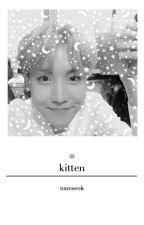 kitten by bottomhoseok