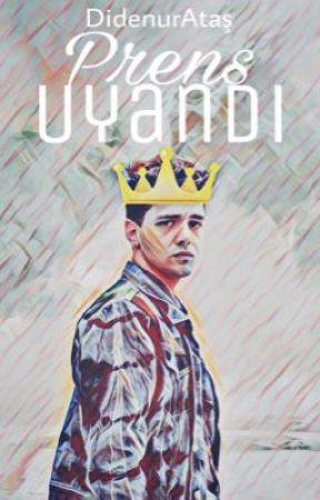 Prens Uyandı by didenurAtas