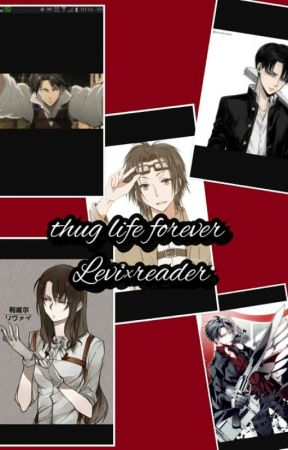 thug life forever levi × reader by animelover20017