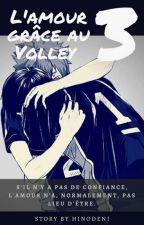 L'amour grâce au Volley 3 [KageHina #1] by OtakuFolle