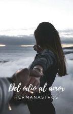 <Del Odio Al Amor,Hermanastros> by LuisinaBaez3