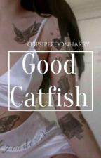 Good Catfish •larry• by oopsipeedonharry