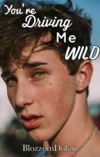 You're driving me wild (Hunter Rowland) by BlozzomDolan